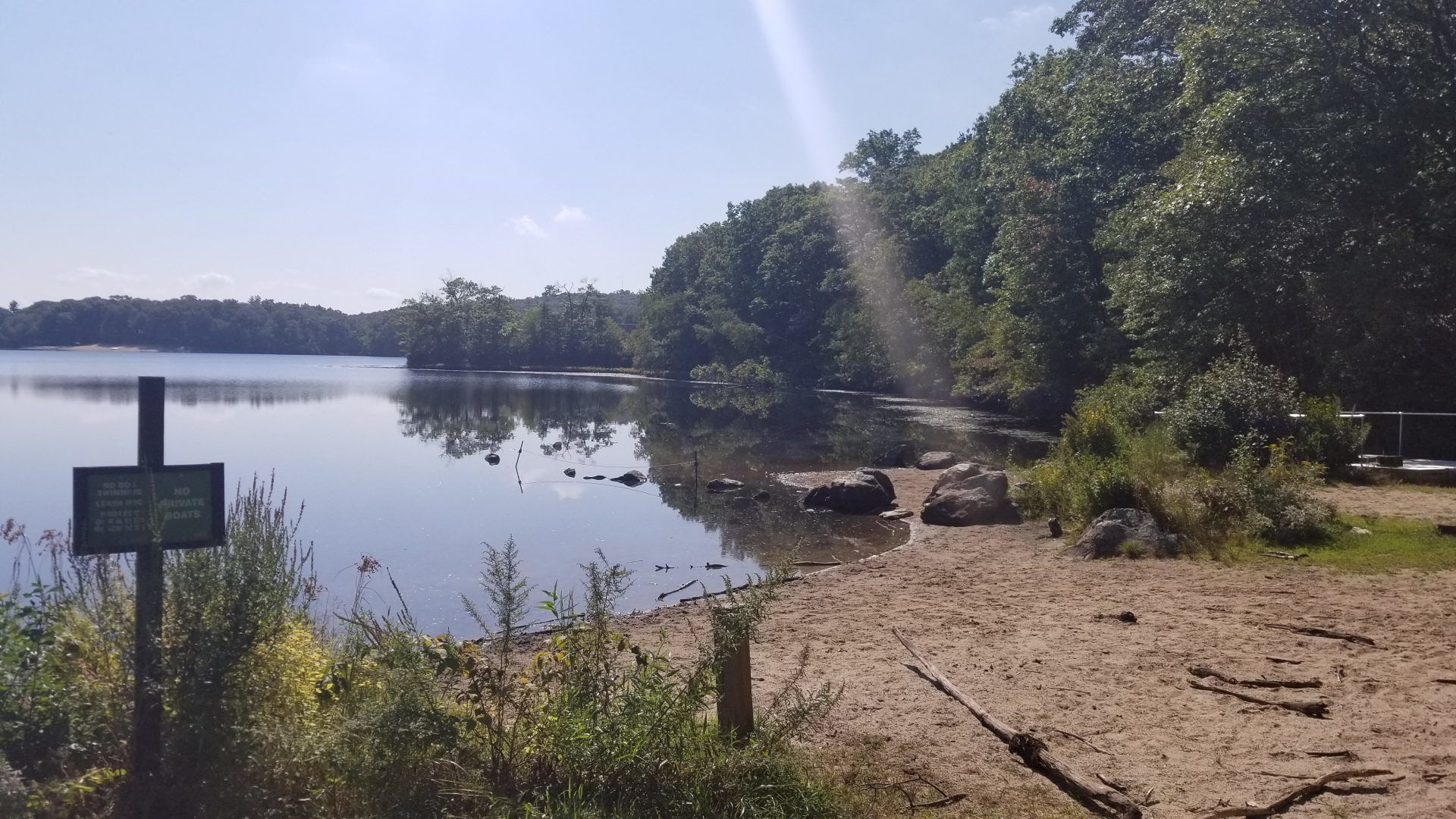 Noannet pond fishing hale reservation westwood ma for Public fishing access near me