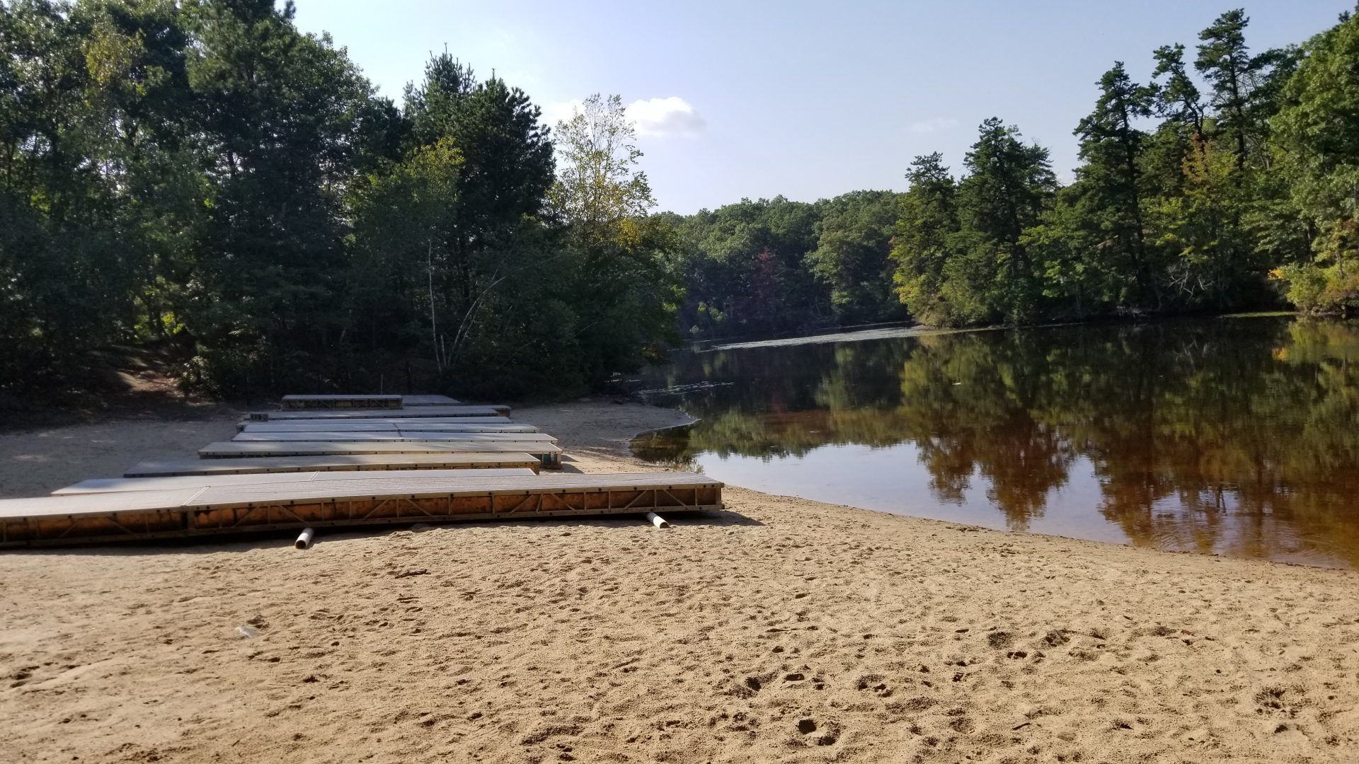 Powissett pond fishing hale reservation dover for Public fishing areas near me