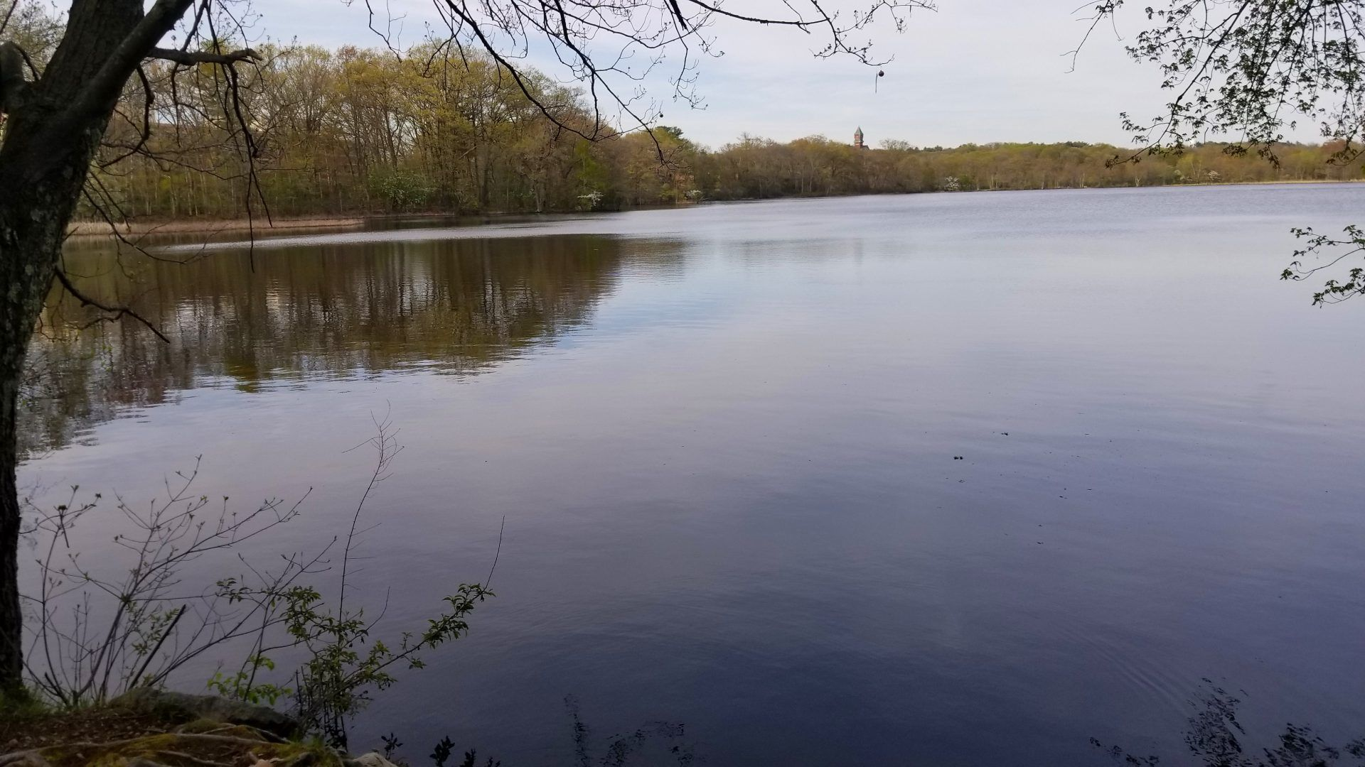 Kendrick Pond Fishing Needham Ma Reviews Photos